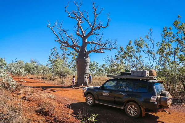 4WD Windjana & Tunnel Creek Tour