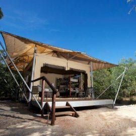 Cygnet Bay Pearl Farm family safari tent