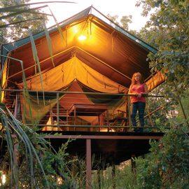Mornington Wilderness Camp tented cabin